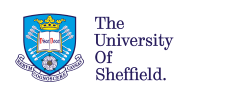Masters in Social Work at the University of Sheffield